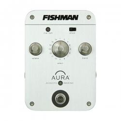 FISHMAN AURA CONCERT PRO-AIP-CO1