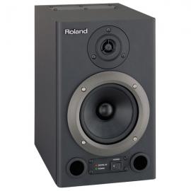 Roland DS 30A SH
