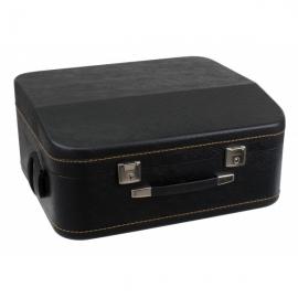 Alpenklang luxus case acordeon 96 basi
