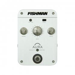 Fishman Aura Orchestra