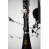 Parrot 7401 N clarinet